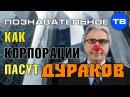 Как корпорации пасут дураков (Познавательное ТВ, Валентин Катасонов)