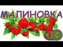 🏆 3 место КУБОК МАЛОГО ШЛЕМА 🏆 Малиновая наливка 🍷