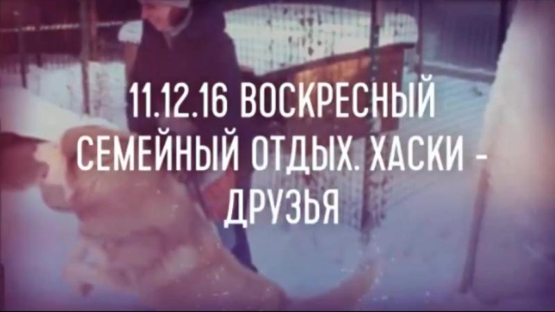 11.12.16 Воскресный семейный отдых. Семья Селезневых. Хаски - Лучшие друзья