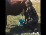 [Kavkaz vine] современные девушки =))