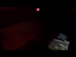 Опубликовано видео задержания преступников, избивших 82-летнюю продавщицу грибов