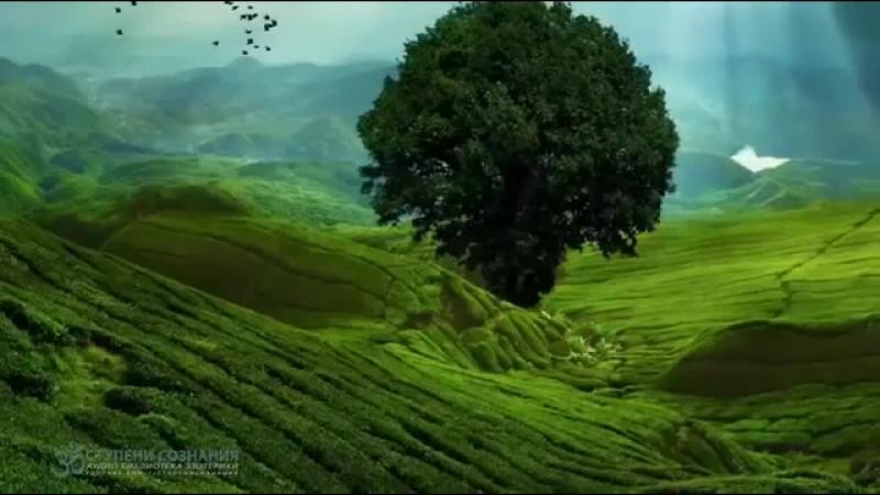 ॐ Тендзин Вангьял Ринпоче - Чудеса естественного ума (аудиокнига).