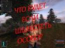 Сталкер Тени Чернобыля - что будет если шелестеть особо Прикол
