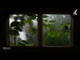 Stacey Kent / Jim Tomlinson - Jardin d'hiver (HD 720p)