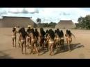 Натуризм Индейцы с реки Xingu (Бразилия)
