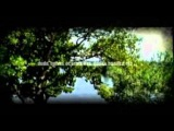 OSIMIRA - album Druva