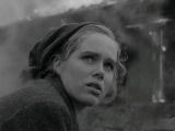 Стыд / Skammen / Ингмар Бергман / 1968