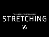 Тренировка по Stretching (студия Zebra, г. Петрозаводск)