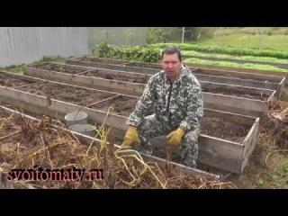 Уборка картофеля, результаты работы над ошибками
