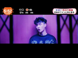 [TEASER] 161116 #EXO - Coming Over [めざましテレビ] @ めざましTV
