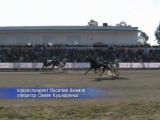 Конно-спортивное шоу в Новосибирске вновь прошло без тотализатора