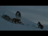 Белый плен (2006)12+