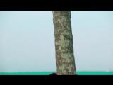 Экс на пляже - 1 сезон 9 серия (выпуск)