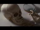 Расследования Мердока (10 сезон 12 серия) | RUS | DexterTV
