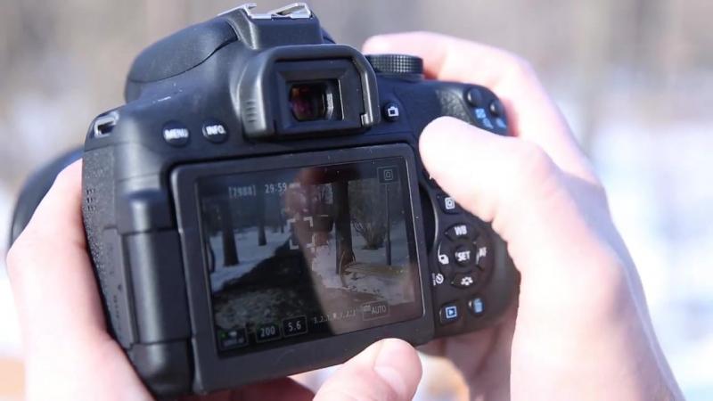 Обзор камеры Canon EOS 750D 760D и фотопринтера