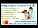 ЕДИНАЯ СКИДОЧНАЯ КАРТА Район Солнцево 9.11.2006