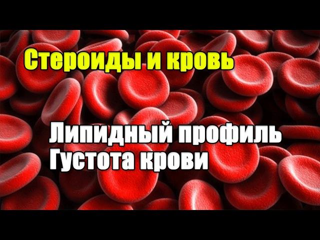 КРОВЬ И СТЕРОИДЫ Холестерин и Густота крови
