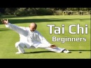 Tai chi chuan for beginners Taiji Yang Style form Lesson 7