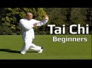 Tai chi chuan for beginners Taiji Yang Style form Lesson 5