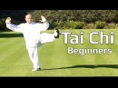 Tai chi chuan for beginners Taiji Yang Style form Lesson 6