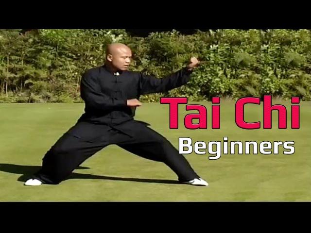 Taiji Canon Fist Chen Style 1 Part 3