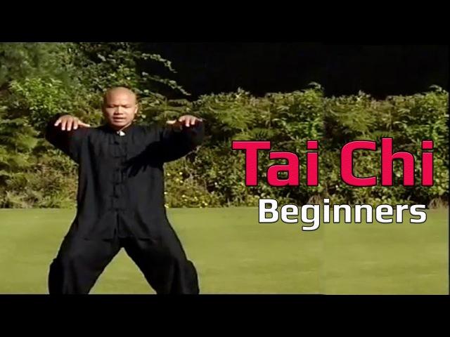 Taiji Canon Fist Chen Style 1 Part 1