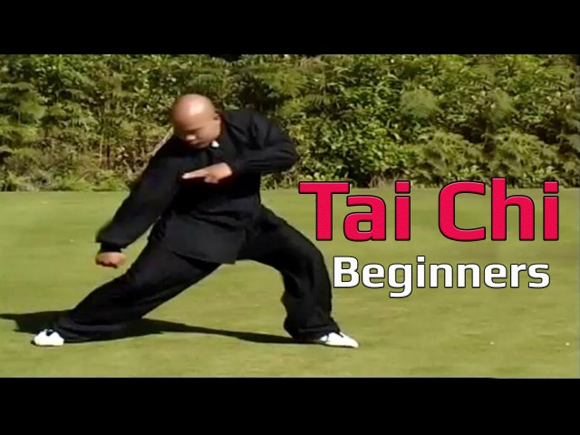 Taiji Canon Fist Chen Style 1 Part 4