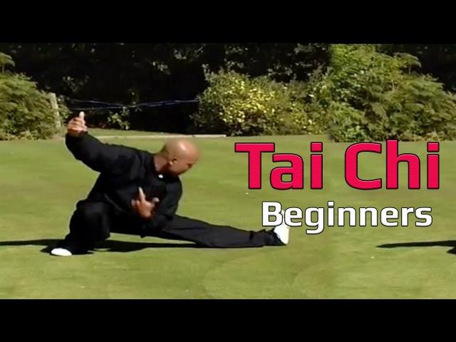 Taiji Canon Fist Chen Style 1 Part 7
