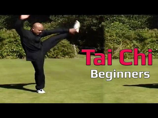 Taiji Canon Fist Chen Style 1 Part 8