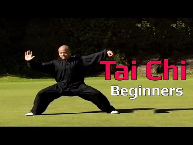 Taiji Canon Fist Chen Style 1 Part 6