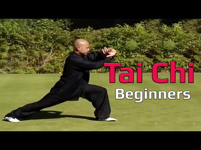 Taiji Canon Fist Chen Style 1 Part 5