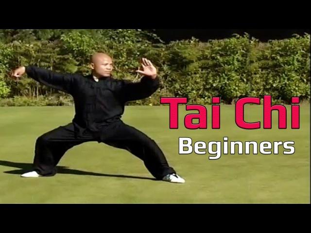 Taiji Canon Fist Chen Style 1 Part 2