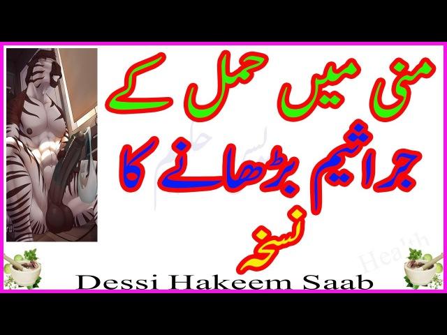 Manni ghari aur hamal ky jraseem bharhany ka nuskha - منی کی جرثیم بڑھانے کا نسخہ