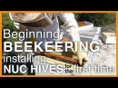 Beginning Beekeeping: Installing Two Nuc (Starter) Hives - GSB S1 E2