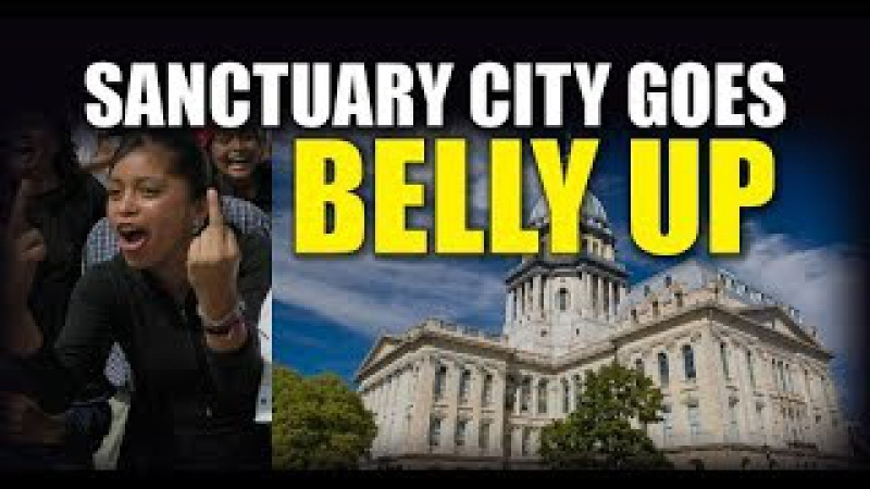 Sanctuary State Illinois, Who Gambled With Federal Funds is Now BANKRUPT