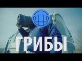 Грибы - Тает Лёд     Премьера клипа