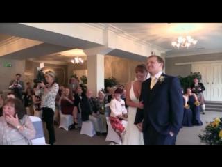 Французский бульдог спасает свадьбу