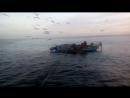 Рассвет ,Работа,-Рыба, Чайки мило с верху .....  Люди и Дельфины.  !!!