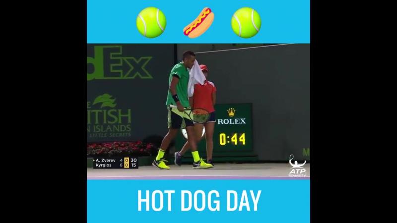 Nick Kyrgios Hot Dog Shot (vk.com/bettinggood23)