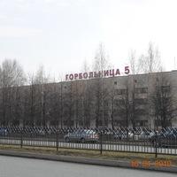 Центральная районная больница омского района