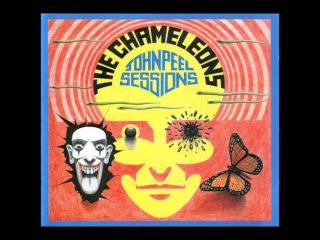 The Chameleons - John Peel Sessions (Full Album/Remastered)