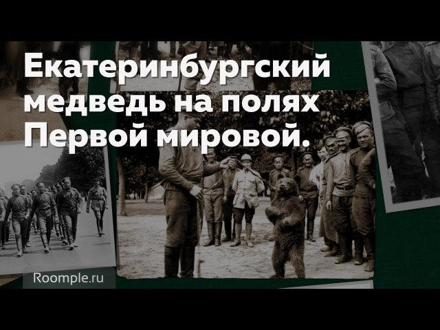 ИСТОРИЯ РОССИИ | Медвежонок из Екатеринбурга