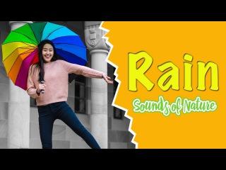 Звуки природы: дождь и гром, ветер, пение птиц (без музыки). Расслабляющая музыка для сниятия стресса