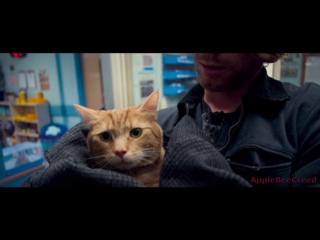 Уличный Кот По Имени Боб - Русский Трейлер 2017 / A Street Cat Named Bob
