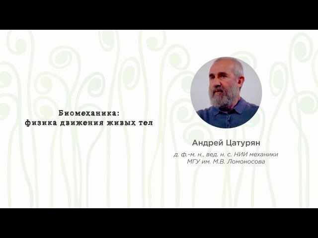 Биомеханика: физикадвижения живых тел • Андрей Цатурян