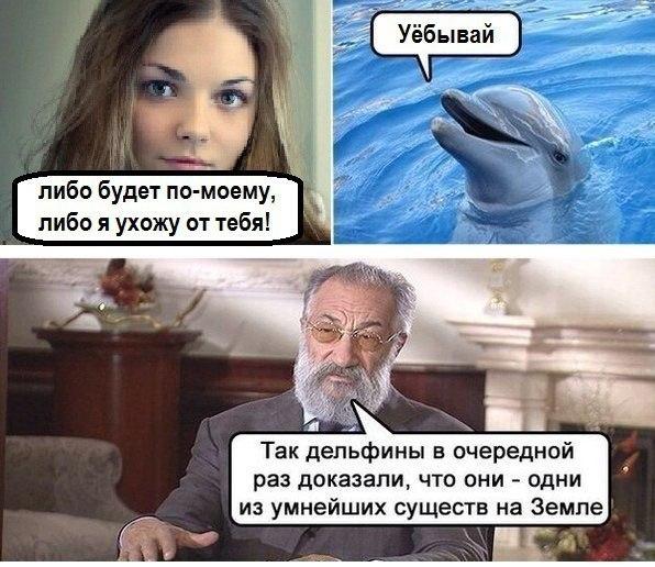 Фото №456280376 со страницы Михаила Кравцова