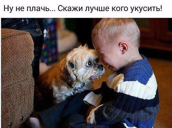 Фото №456244305 со страницы Алтынай Тугуновой