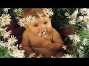 Дети это Счастье Дети это Радость фото Happy childhood HD