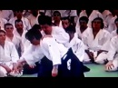 Tamura sensei - Tachi waza gyakuhanmi katate dori irimi nage