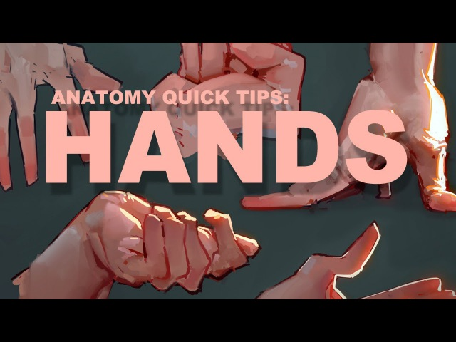 Anatomy Quick Tips Hands